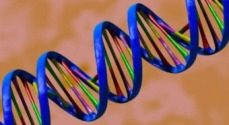 All About DNA - Bibliography